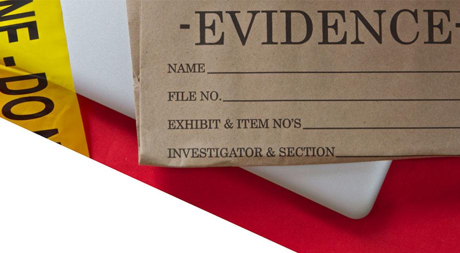 prosecutors and criminal defense lawyers